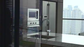 Conterporary Kitchen View