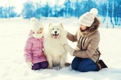 Modern och barnet med vit Samoyed dog tillsammans på insnöad vinter Royaltyfri Foto