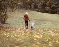 Modern och barnet som tillsammans går i höst, parkerar Royaltyfri Foto