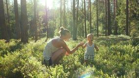 Modern och sonen på åldern av ett år mot efterkrav och äter lösa blåbär i skog stock video