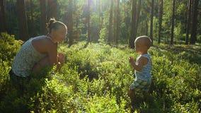 Modern och sonen på åldern av ett år mot efterkrav och äter lösa blåbär i skog lager videofilmer