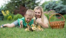 Modern och sonen som ligger på gräs och ser som anden, går lite arkivfoto