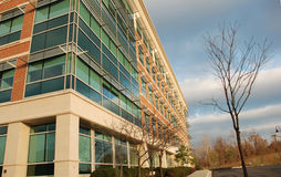 Modern Office Building 2. Architecture of steel and glass and simple landscaping makes a modern looking office building Royalty Free Stock Photography