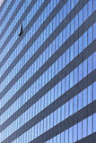 Modern Office Tower with Opened Window Royalty Free Stock Image