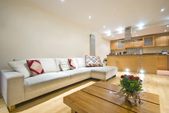 Free Modern Open Plan Living Room And Kitchen Stock Image - 14633981