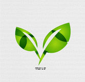 Modern paper design eco leaves concept Royalty Free Stock Photography