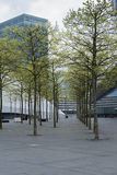Modern park. In front of an office building in Luxembourg Royalty Free Stock Image
