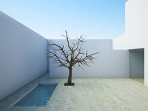 Modern patio. A 3D illustration of the modern patio with swiming pool and tree Royalty Free Stock Photo