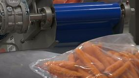 Line for packaging of Carrot. Modern plant for carrot processing. Vegetable processing factory stock video footage