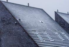 Modern pointy dak dat in sneeuw tijdens wintertijd, sneeuw koud weer, Nederlandse architectuur wordt behandeld stock foto's