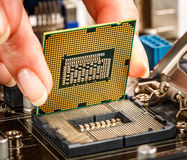 Modern processor and motherboard Royalty Free Stock Images