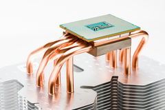 Modern processor on plate the cooler. Cooling concept Stock Images