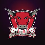 Modern professional logo for sport team. Bull mascot. Bulls, vector symbol on a dark background. Stock Photography