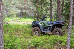 The modern quad bike parked at the forest in summer day Stock Photos