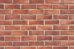 brick wall red Royalty Free Stock Images