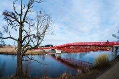 Modern red bridge and barren tree royalty free stock photos
