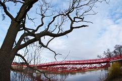 Modern red bridge and barren tree. A modern red steel bridge with a barren spring tree taken with fisheye wide angle lens royalty free stock image