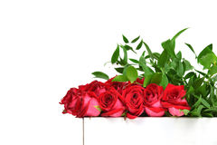 Modern red roses and green leafs bouquet composition with text c Stock Images