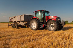 Modern red tractor on the agricultural field Stock Images
