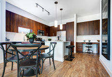 Modern Remodeled Kitchen Stock Images