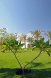 Modern Residence Through Trees stock image