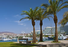 Modern resorts and marine lagoone at Eilat city Royalty Free Stock Photo