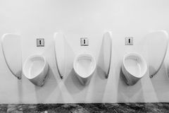 Modern restroom interior with urinal row Stock Images