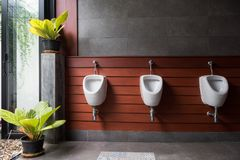 Modern restroom with plant decoration. Modern restroom with urinal row with plant decoration in garden Royalty Free Stock Photography