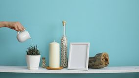 Modern room decoration with picture frame mockup. White shelf against pastel turquoise wall with candle and rocks in bottle. Hand. Watering potted succulent stock video footage