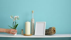 Modern room decoration with picture frame mockup. White shelf against pastel turquoise wall with candle and rocks in bottle. Hand. Putting down potted orchid stock video