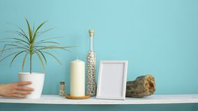 Modern room decoration with picture frame mockup. White shelf against pastel turquoise wall with candle and rocks in bottle. Hand. Putting down potted dracaena stock video