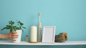 Modern room decoration with Picture frame mockup. White shelf against pastel turquoise wall with Candle and rocks in bottle. Hand. Putting down potted stock video footage