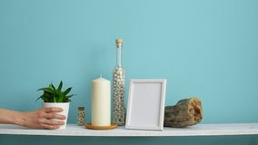 Modern room decoration with Picture frame mockup. White shelf against pastel turquoise wall with Candle and rocks in bottle. Hand. Putting down potted snake stock video