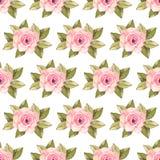 Modern rose seamless pattern Stock Photography
