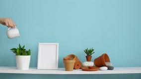 Modern rumgarnering med modellen för bildram Vit hylla mot den pastellfärgade turkosväggen med krukmakeri och den suckulenta v