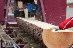 Modern sawmill Royalty Free Stock Images