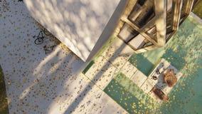 Modern Scandinavian house. Exterior details autumn stock video footage