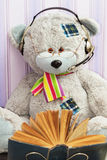 Modern scientific big teddy bear Stock Images