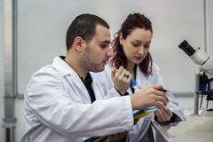 Modern scientist working with pipette in biotechnology laborator. Y equipment for research on a white table and an assistant who records the measured results Stock Photo