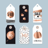 Modern set of autumn, fall sale and quality labels, gift tags. Lettering, hand drawn leaves, apple, pumpkin elements. Vectors Stock Photography
