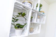 Modern shelf Stock Image