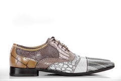 Modern shoes on the white background Stock Images
