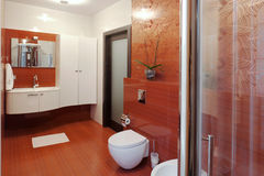 Modern shower cabin and bidet Stock Image