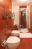 Modern shower cabin and bidet Stock Photo
