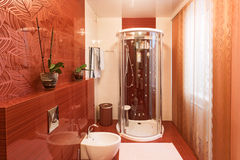 Modern shower cabin and bidet Stock Images