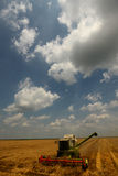 Modern skördetröska på arbete med blå himmel Royaltyfri Foto