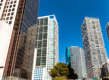 Modern skyline of Downtown Miami, view from the street Stock Images
