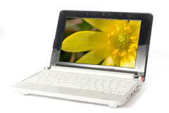 Modern small laptop Stock Image