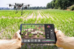 Free Modern Smart Farming Agriculture Technology At Farm Stock Photos - 189262903