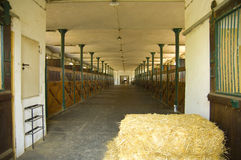 modern stable Royaltyfria Bilder